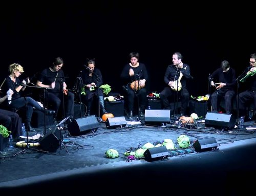 The Vegetable Orchestra – Transplants, live @ TEDxVienna